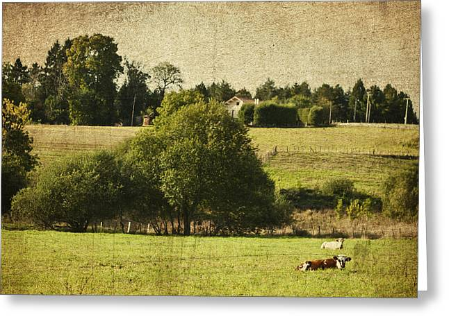 A French Country Scene Greeting Card by Nomad Art And  Design