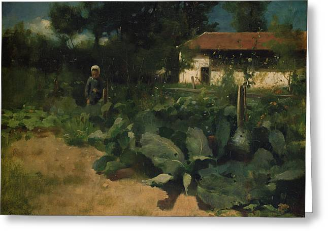Cabbages Greeting Cards - A French Kitchen Garden, 1883 Greeting Card by Edward Stott