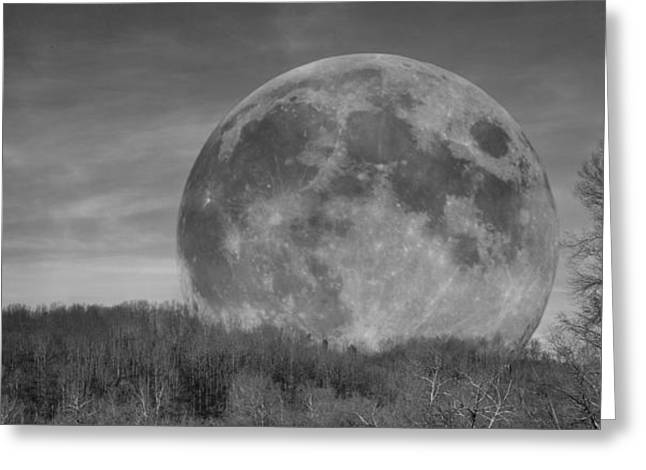 Mystical Landscape Greeting Cards - A Friend at Night Greeting Card by Betsy C  Knapp