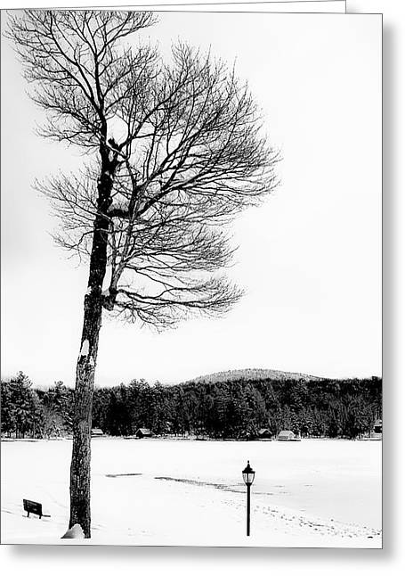 Patterson House Greeting Cards - A Frigid Day on Old Forge Pond Greeting Card by David Patterson
