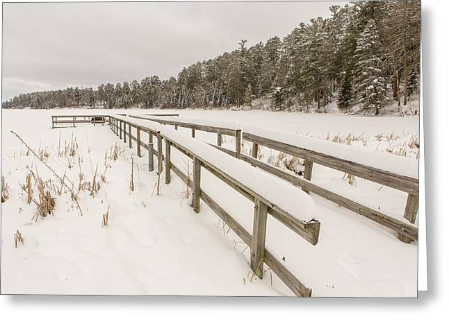 Pinus Resinosa Greeting Cards - A Frozen Dock Greeting Card by Tim Grams