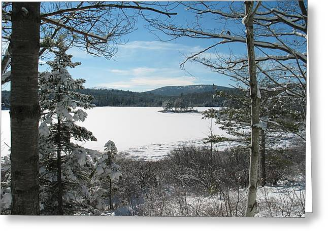 Maine Landscape Greeting Cards - A Frozen Lake in Maine Greeting Card by Mountain Dreams