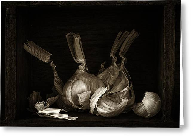 Wooden Box Greeting Cards - A Garlic Explosion Greeting Card by Constance Fein Harding