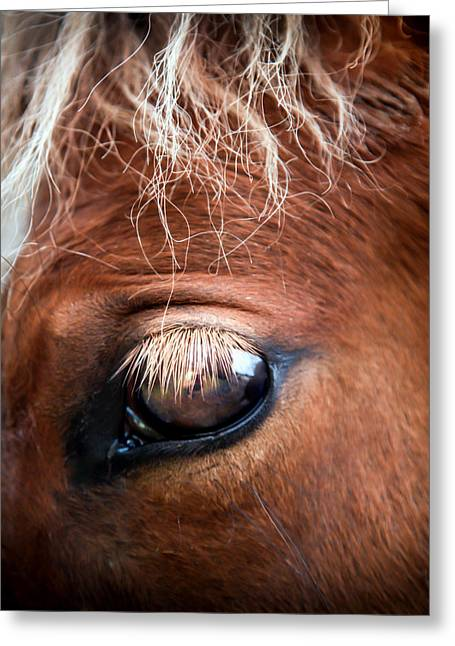 Eyelash Greeting Cards - A Gentle Soul Greeting Card by Karen Wiles