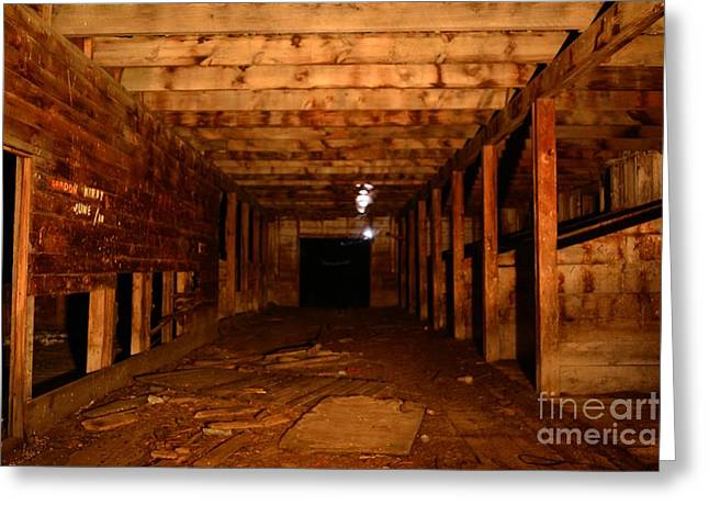 Ghostly Barn Greeting Cards - A Ghostly Self Portrait Greeting Card by Phil Dionne
