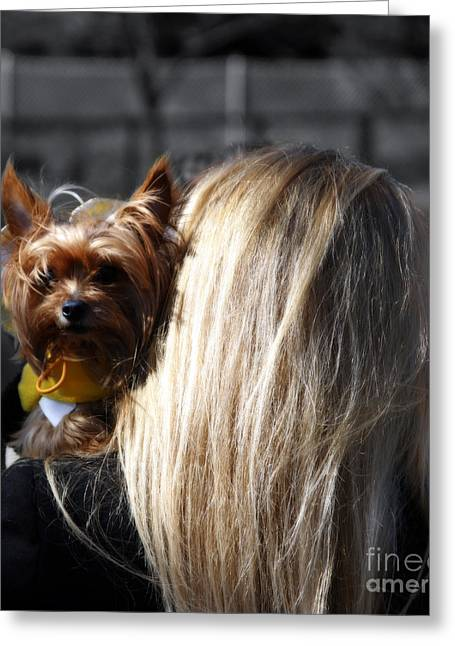 A Girl And Her Dog Greeting Card by Steven  Digman