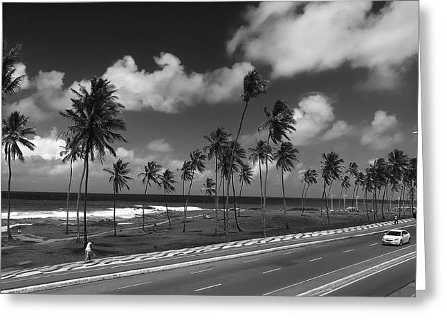 Paradise Road Greeting Cards - A Glimpse of Brazil Greeting Card by Mountain Dreams