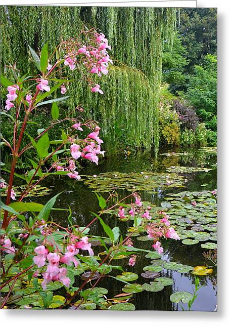 Carla Parris Greeting Cards - A Glimpse of Monets Pond at Giverny Greeting Card by Carla Parris