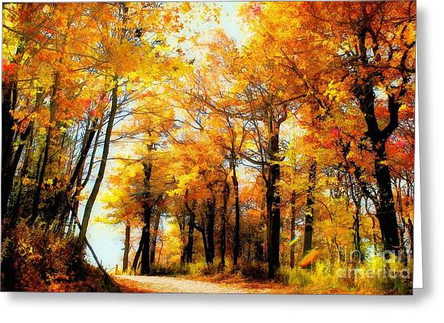 Rural Road Greeting Cards - A Golden Day Greeting Card by Lois Bryan