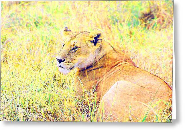 Lions Tapestries - Textiles Greeting Cards - A Good Day Greeting Card by Joseph Wiegand