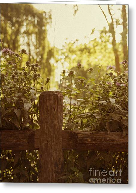 Old Fence Post Greeting Cards - A Good Morning Greeting Card by Margie Hurwich