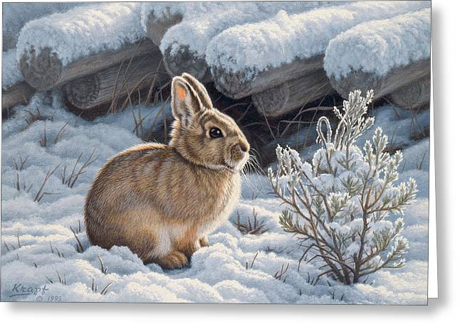 Wildlife Greeting Cards - A Good Place - Bunny Greeting Card by Paul Krapf