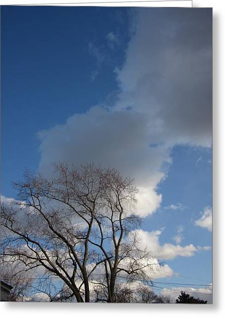Guy Ricketts Photography Greeting Cards - A Great Big Sky Greeting Card by Guy Ricketts