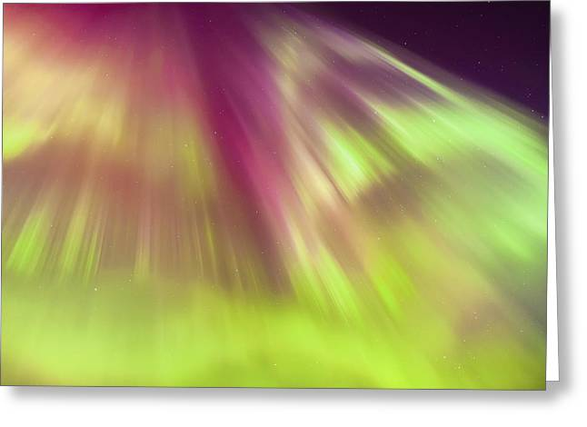 Tony Knowles Coastal Trail Greeting Cards - A Green And Purple Northern Lights Greeting Card by Kevin Smith