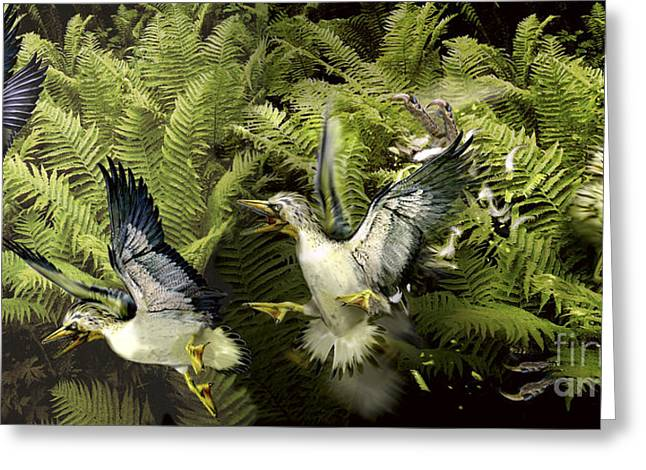 Ichthyornis Greeting Cards - A Group Of Ichthyornis Seabirds Greeting Card by Jan Sovak