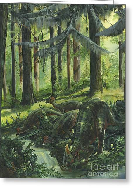 Stream Digital Art Greeting Cards - A Group Of Lambeosaurus Drinking Greeting Card by Jan Sovak