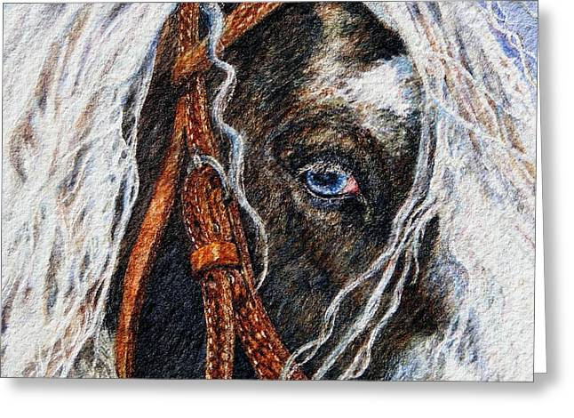 Watercolor. Equine. Bridle Greeting Cards - A Gypsys Blue Eye Greeting Card by Denise Horne-Kaplan