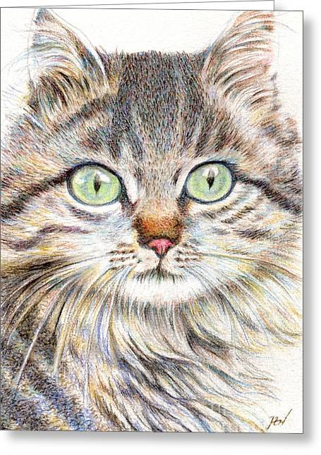 Desk Drawings Greeting Cards - A Handsome Cat  Greeting Card by Jingfen Hwu