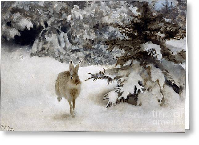 Hare Greeting Cards - A Hare in the Snow Greeting Card by Bruno Andreas Liljefors