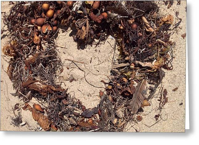 Dried Seaweed Greeting Cards - A Heart from the Sea Greeting Card by Kathleen Sullivan