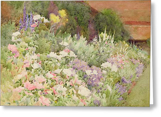 Lupin Greeting Cards - A Herbaceous Border Greeting Card by Hugh L. Norris