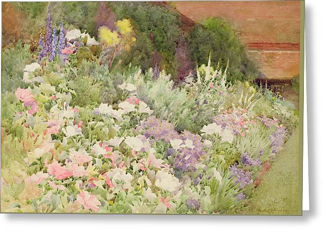 A Herbaceous Border Greeting Card by Hugh L Norris