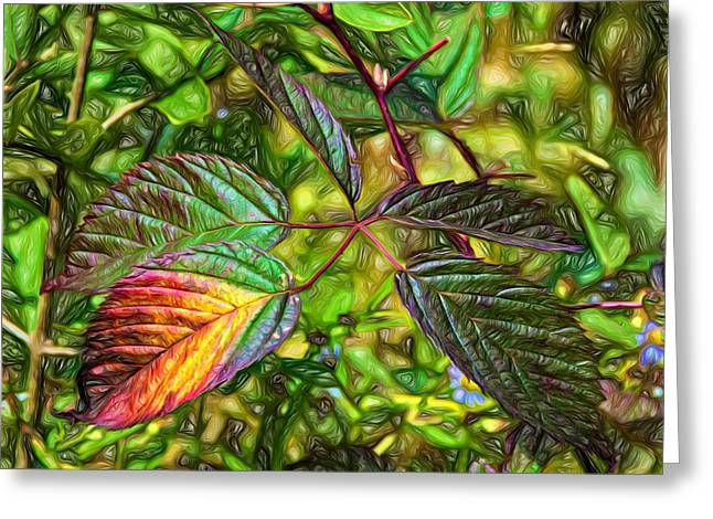 Shiny Leaves Greeting Cards - A Hint of Autumn - Paint Greeting Card by Steve Harrington