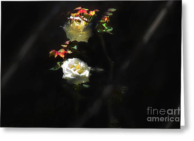 Streaming Light Greeting Cards - A Hint Of Light II Greeting Card by Al Bourassa