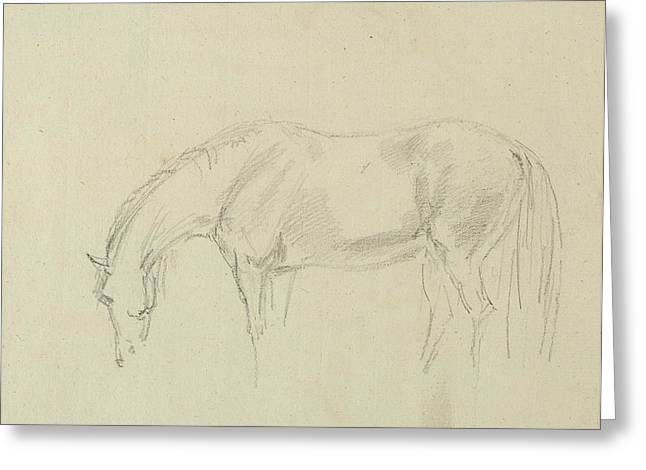 Feeding Greeting Cards - A Horse Grazing Graphite On Paper Greeting Card by Sawrey Gilpin
