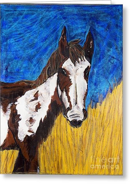 Becca Weeks Greeting Cards - A Horse of Course Greeting Card by Becca Lynn Weeks