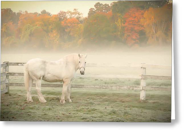 A Horse With No Name Greeting Card by K Hines