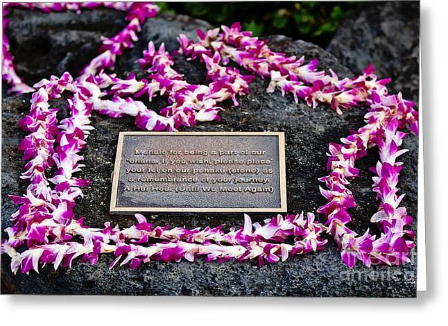 Flower Memorial Photography Greeting Cards - A Hui Hou Greeting Card by Scott Pellegrin