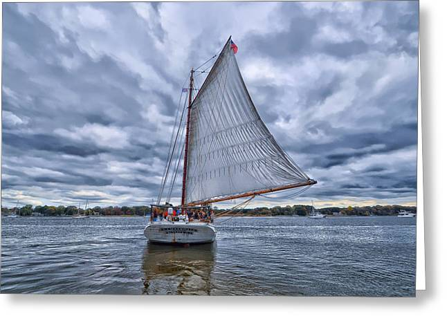 Historic Schooner Greeting Cards - A J Meerwald Greeting Card by Amy McGovern