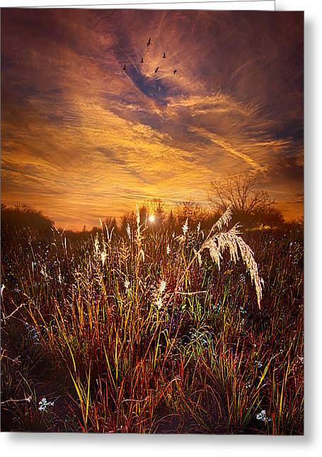 Outdoors.color Greeting Cards - A Journey Through Time Greeting Card by Phil Koch