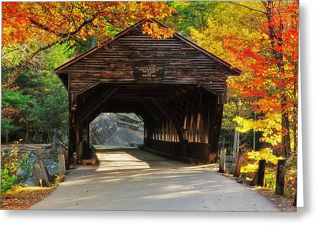 Autumn Scenes Greeting Cards - A Kancamagus Gem - Albany Covered Bridge NH Greeting Card by Thomas Schoeller