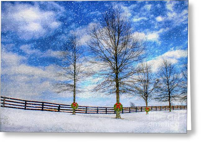 Fenceline Greeting Cards - A Kentucky Christmas Greeting Card by Darren Fisher
