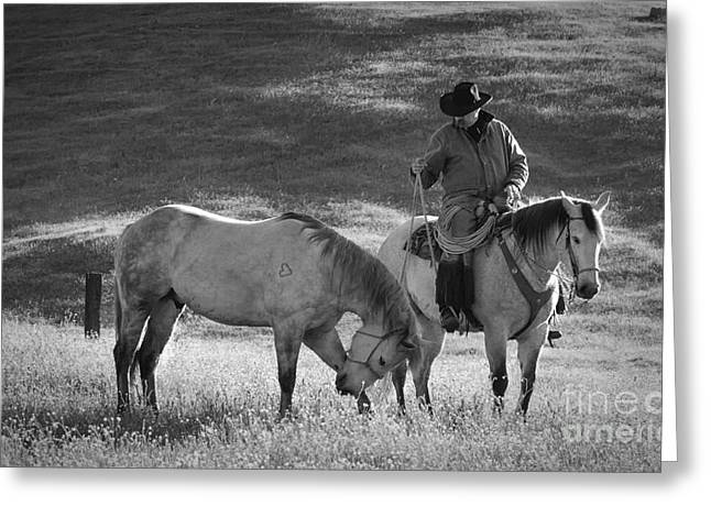 The Old West Greeting Cards - A Kind Moment Greeting Card by Sandra Bronstein