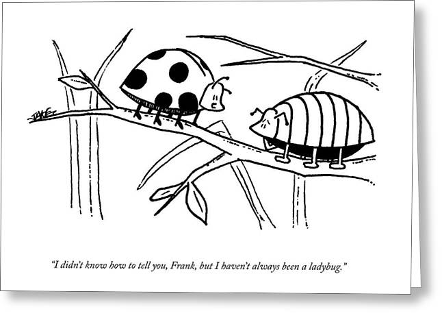 A Ladybug Speaks To A Beetle Greeting Card by Jake Goldwasser