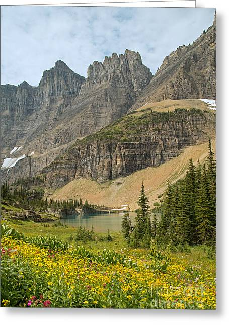 Natural Focal Point Photography Greeting Cards - A Lake Near Iceberg Lake Along the Trail Greeting Card by Natural Focal Point Photography