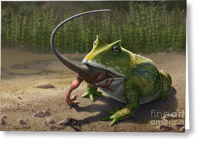 Existence Greeting Cards - A Large Beelzebufo Frog Eating A Small Greeting Card by Sergey Krasovskiy