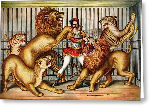 a Lion tamer in cage with two lions Greeting Card by Celestial Images