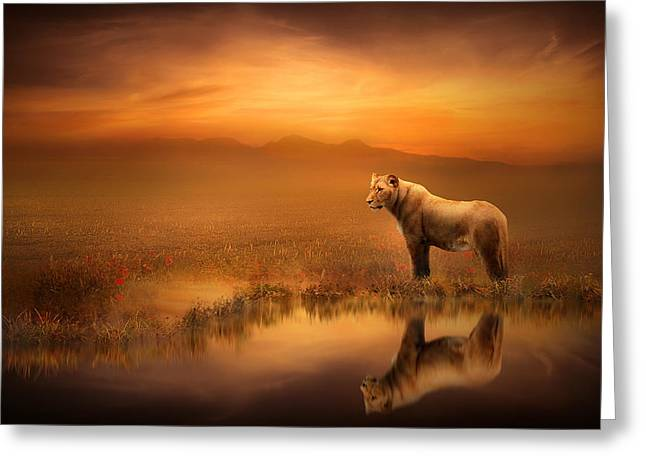 Lions Greeting Cards - A Lions World Greeting Card by Jennifer Woodward