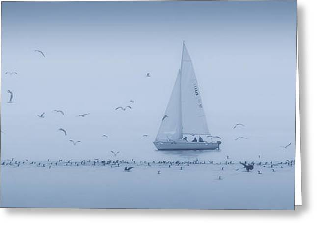 Sailboat Art Greeting Cards - A Little Company Greeting Card by Peter Scott