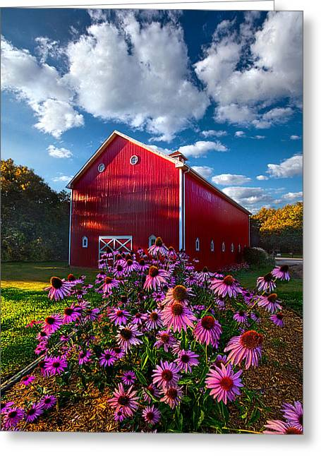 Sun Ray Greeting Cards - A Little More Country Greeting Card by Phil Koch