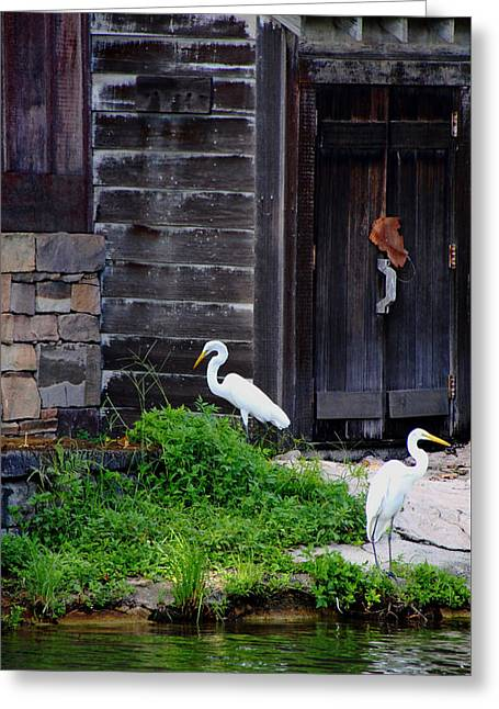 Grist Mill Greeting Cards - A Little Rustic Charm Greeting Card by Debbie Oppermann