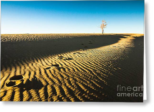Heaven Greeting Cards - A Lone Tree on a Sand Dune Greeting Card by Ellie Teramoto