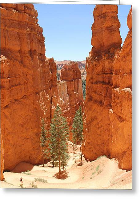 Hiking Greeting Cards - A Long Way to the Top Greeting Card by Mike McGlothlen