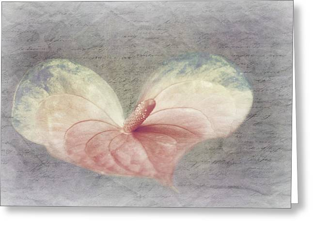 Love Letter Greeting Cards - A Love Letter Greeting Card by Heike Hultsch