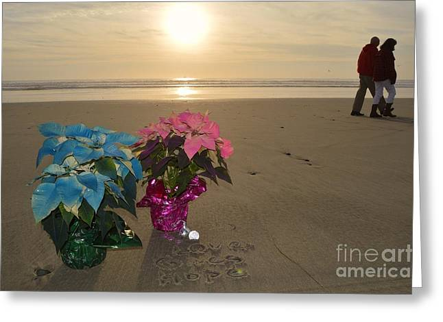 Laurie D Lundquist Photographs Greeting Cards - A Lovely Christmas Greeting Card by Laurie D Lundquist