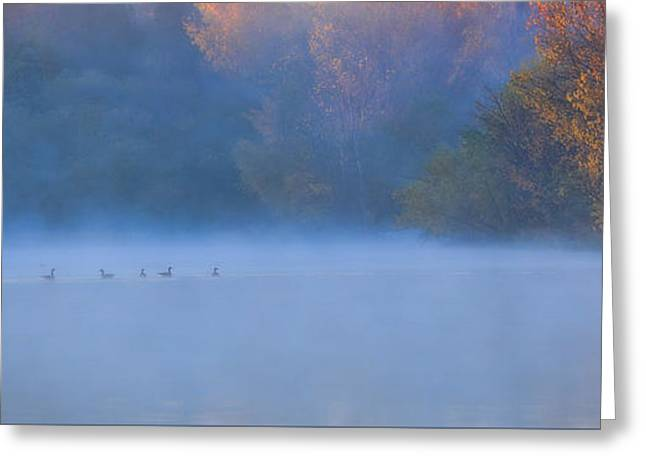 Chalco Hills Recreation Area Greeting Cards - A Lovely Foggy Morning Greeting Card by Elizabeth Winter
